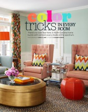 http://dvorindesign.com/files/gimgs/th-14_HGTV_ColorTricks_Cover.jpg