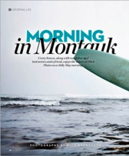 http://dvorindesign.com/files/gimgs/th-14_NYOmag_MontaukMorningSpread_THMB.jpg